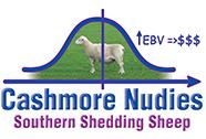 Cashmore Nudies